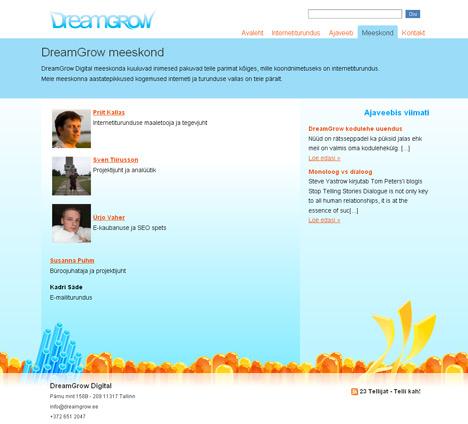 DreamGrow internetiturundus
